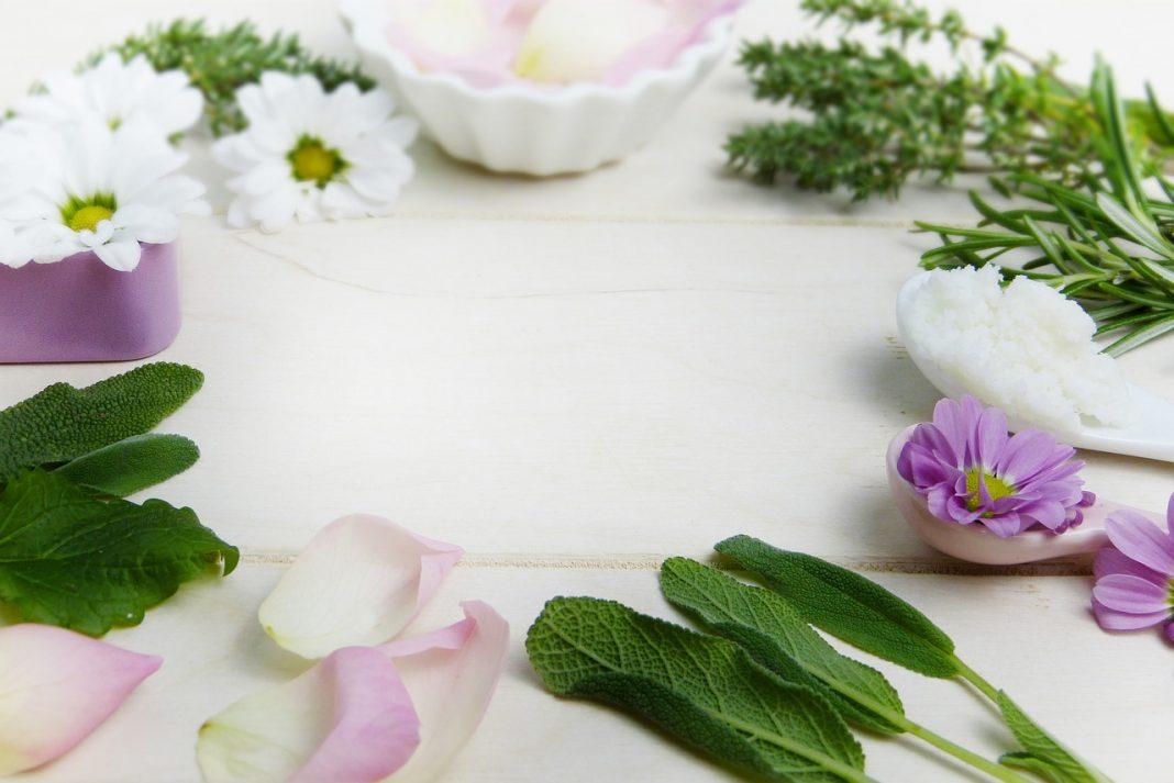 צמחי מרפא והטיפול בסימפטומים של סטרס