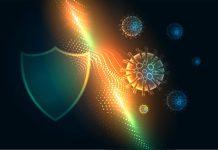 מה תפקידה של מערכת החיסון?